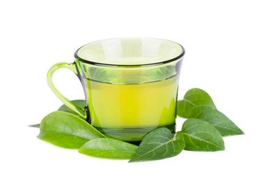 ¿Por qué incluir Té verde en la dieta?